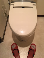 A photo of a typical household Japanese toilet with a pair of red plastic toilet slippers