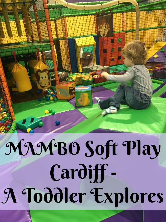 Mambo-Soft-Play-Cardiff-A-Toddler-Explores-text0over-image-of-toddler-on-slide