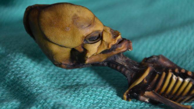 La trágica historia detrás de la momia hallada en #Chile que algunos creían era un extraterrestre