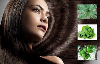 Drugs growing Hair