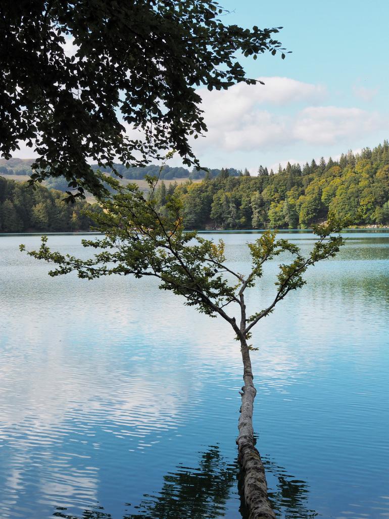 Randonnée autour du lac Pavin dans le massif du Sancy