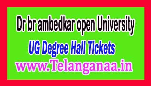 BRAOU UG Degree Hall Tickets 2016 Download