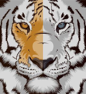 tigre albino y tigre de bengala