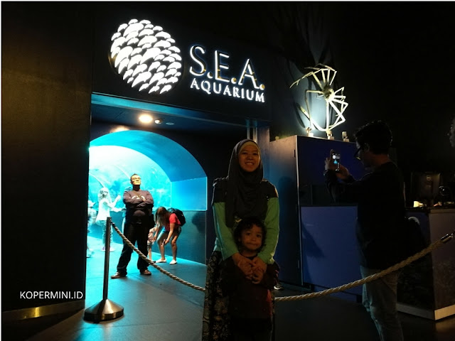 Harga tiket SEA Aquarium, aquarium terbesar di dunia