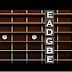 Aplikasi Gitar Tuner Online