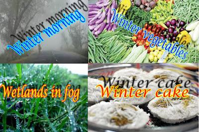 healthandtips71.blogspot.com