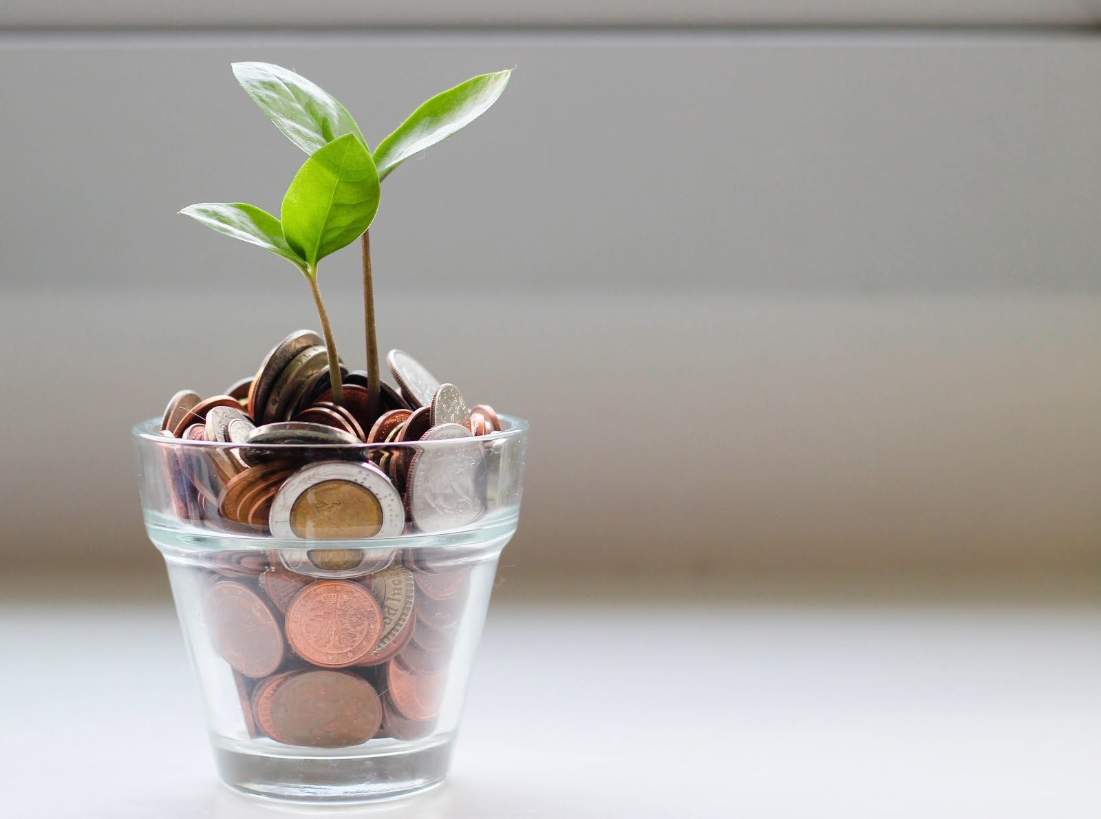 Top eco-friendly ways (tips and tricks) to save money