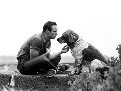 http://steroge.tumblr.com/post/173550663411/art-shay-marlon-brando-and-family-dog