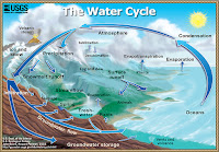 The Water Cycle: Graphic showing the movement of water through the water cycle. (Credit: water.usgs.gov) Click to Enlarge.