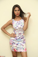 Nishi Ganda stunning cute in Flower Print short dress at Tick Tack Movie Press Meet March 2017 068.JPG