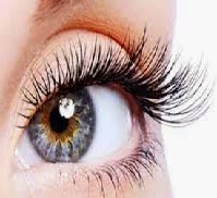 Eyelashes Grow Longer