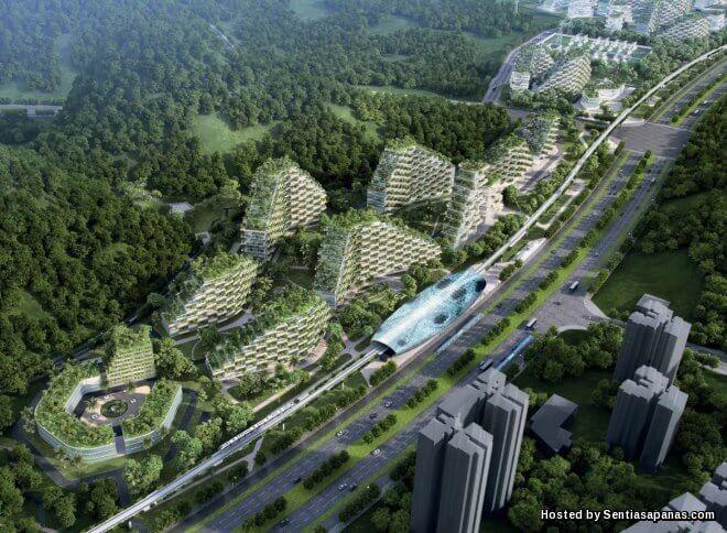 China Negara Pertama Bina Bandar Dalam Hutan