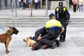 La policía local reduce y detiene a un varón que gritaba durante el homenaje a las víctimas de la Guerra Civil