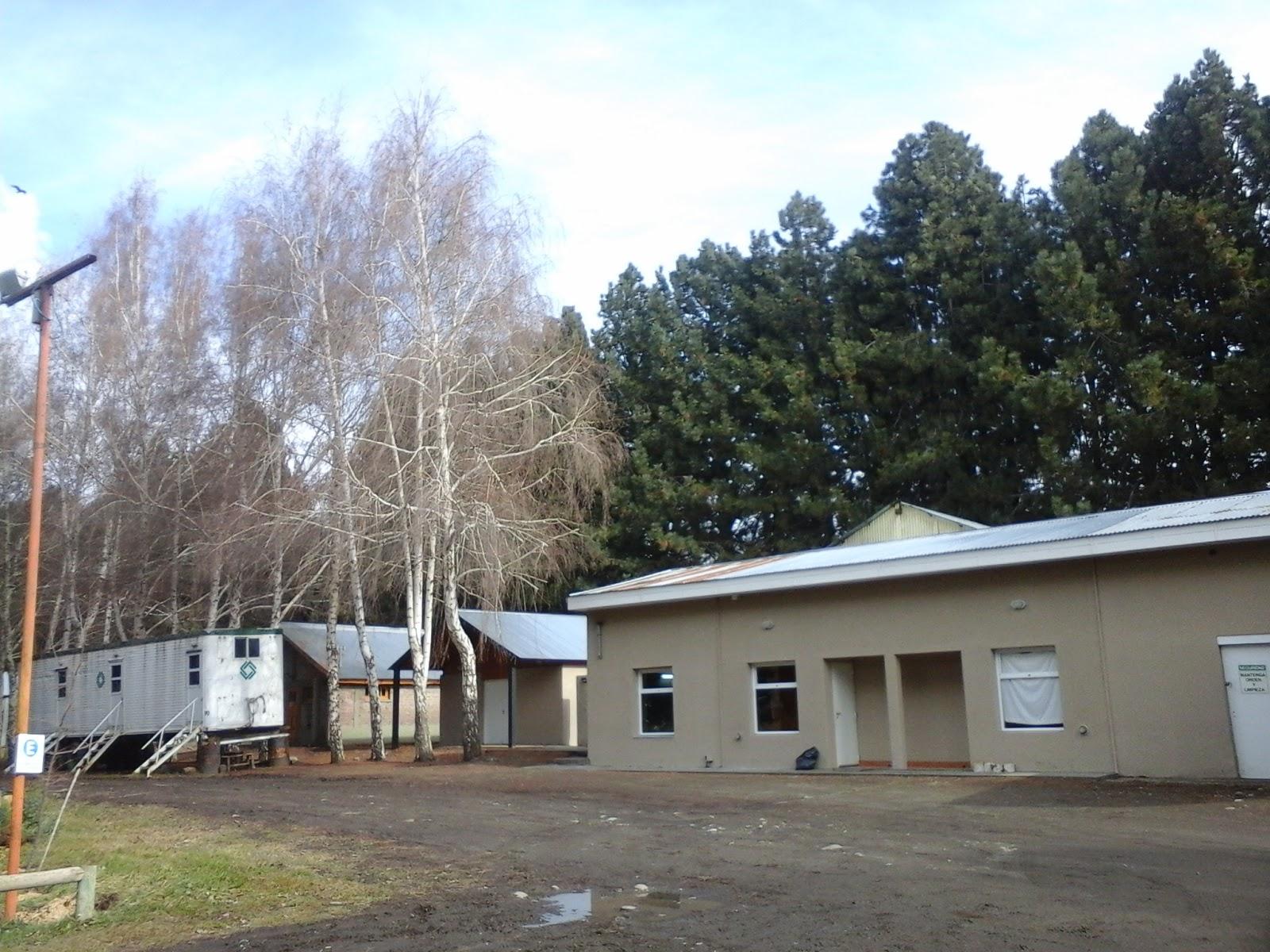 Patagonia andina forestal reuni n en el vivero de corfone for Viveros en neuquen