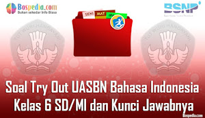 Download Soal Try Out Bahasa Indonesia Kelas 6 Pdf 2019