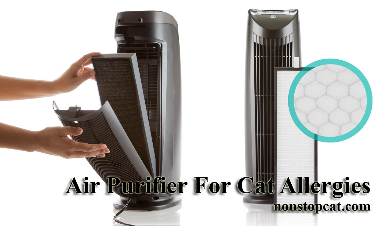 Air Purifier For Cat Allergies