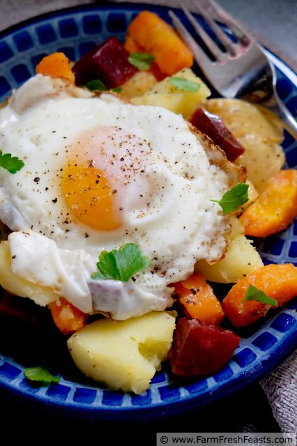 A meatless main dish salad recipe composed of roasted root vegetables like beets, carrots, and potatoes over tender bok choy, topped with a fried egg.