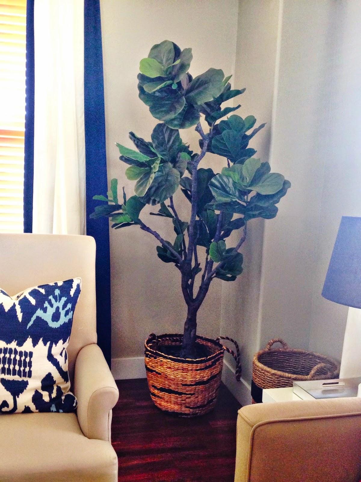 faux fiddle leaf fig trees   6th street design school   bloglovin'