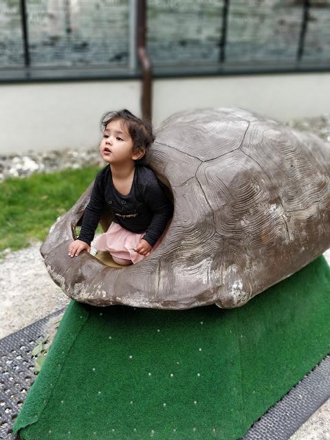 Innsbruck Zoo