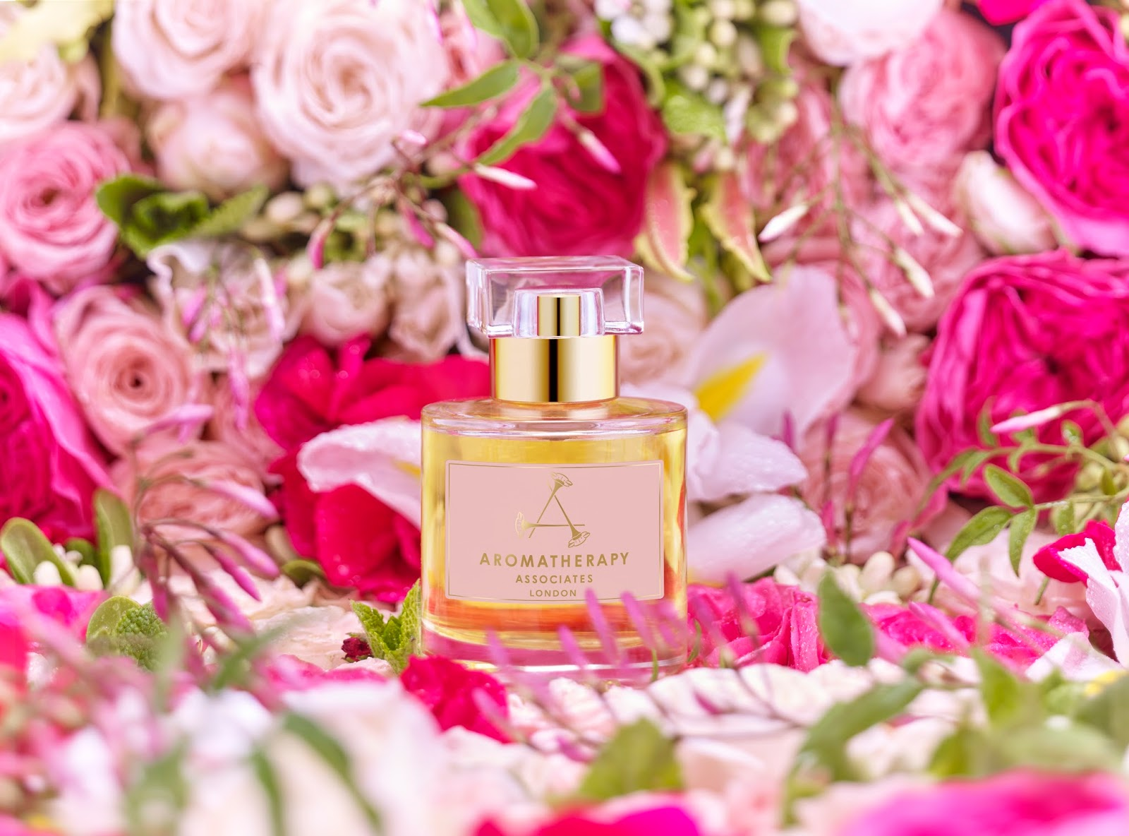New limited edition eau de parfum aromatherapy associates were delighted to introduce our new limited edition eau de parfum in memory of our co founder geraldine howard the reviving and captivating blend was izmirmasajfo