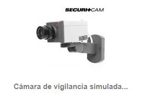 Cámara de vigilancia simulada