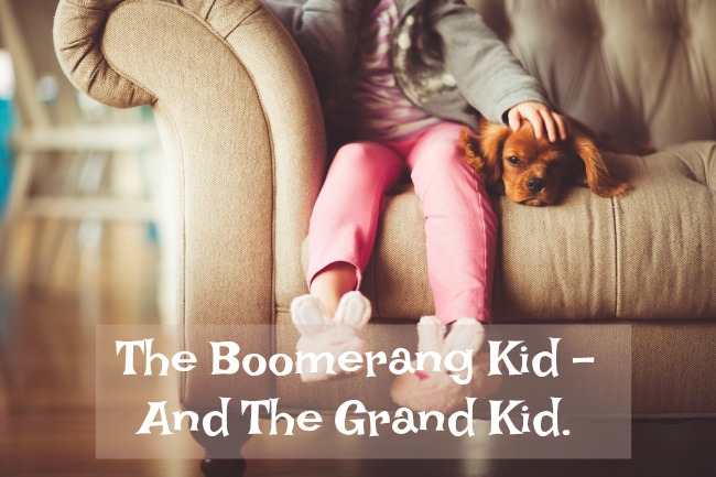 the-boomerang-kid-and-the-grand-kid-text-over-image-of-child-and-puppy-on-sofa