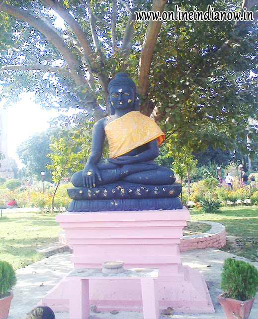 BUDDHA PHOTO SARNATH-ASHOK CHAKRA SARNATH PHOTO-SARNATH PHOTO-BUDDHA PHOTO HD SARNATH-BUDDHA PHOTO SARNATH-SARNATH BUDDHA HD PHOTO