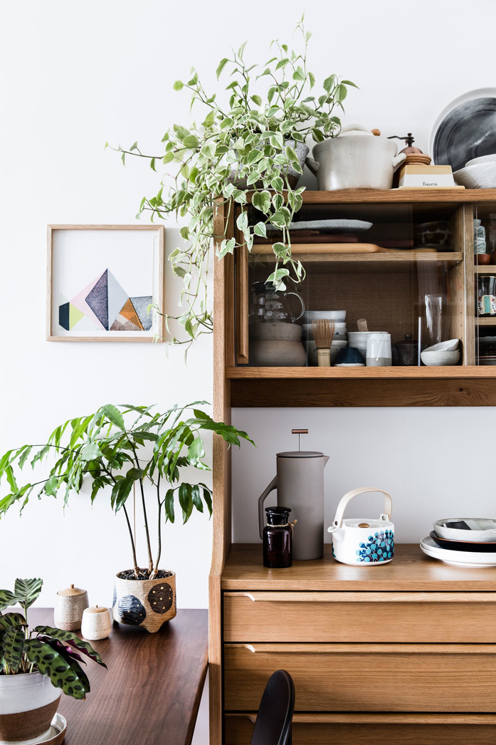 A Lovely Curation with Plants