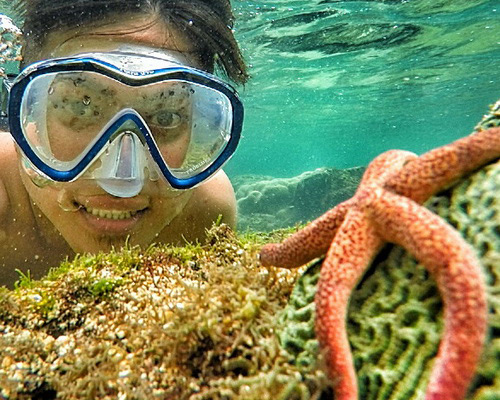 Tinuku Travel Nglambor beach in Gunung Kidul as snorkeling paradise in Indian Ocean atoll lagoon as natural aquarium