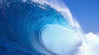 Наука о Мировом океане и его частях