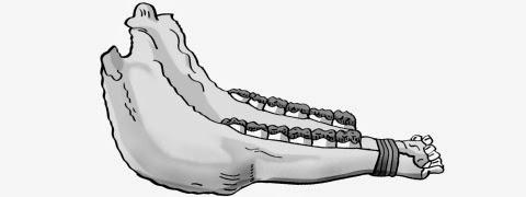 quijada (jawbone) glayscale picture