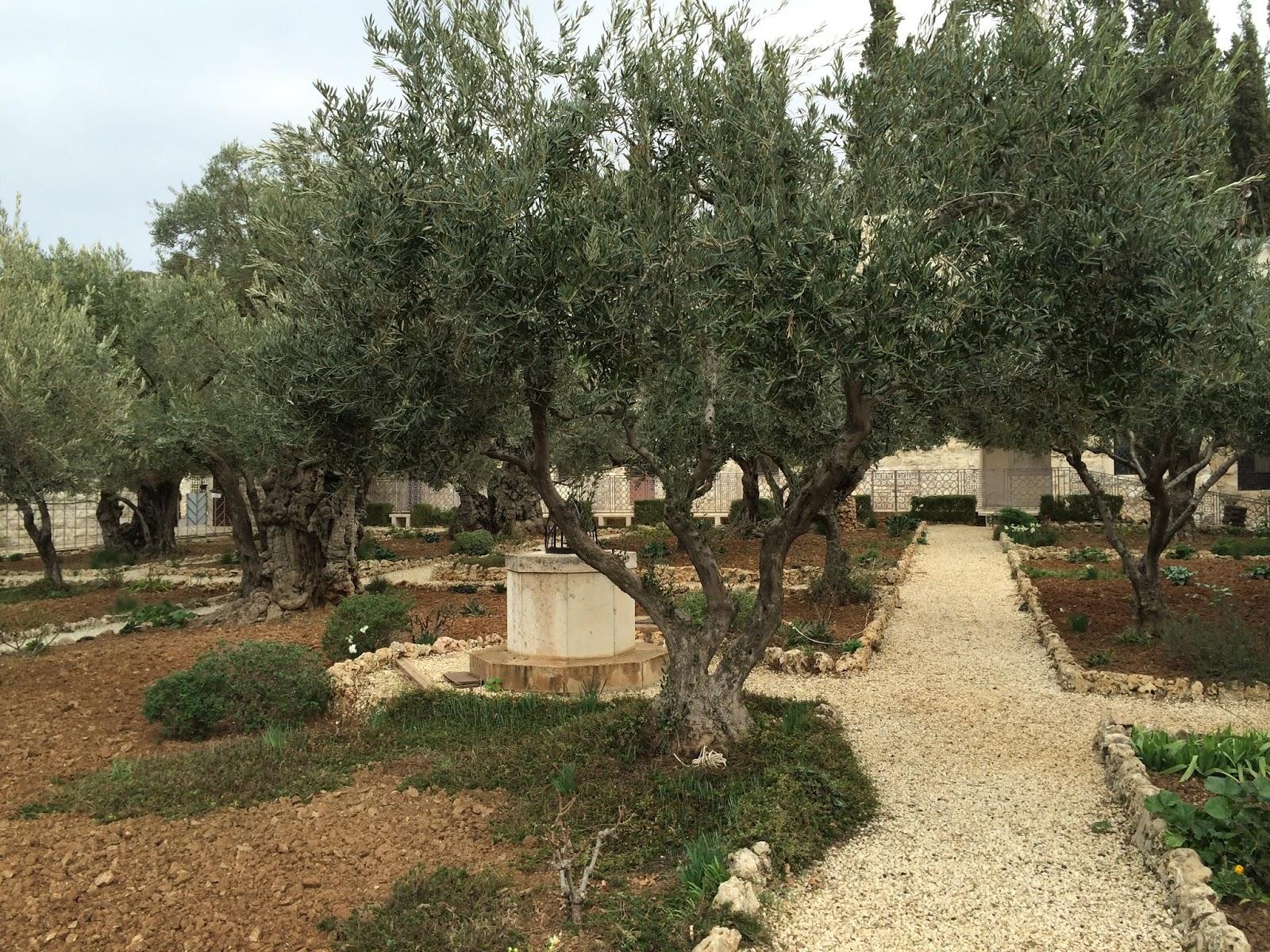The Garden Of Gethsemane | Sermon from 3/18/2018 – Faith Church