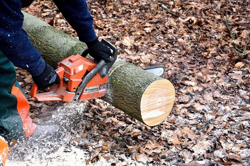 buying-battery-chainsaw