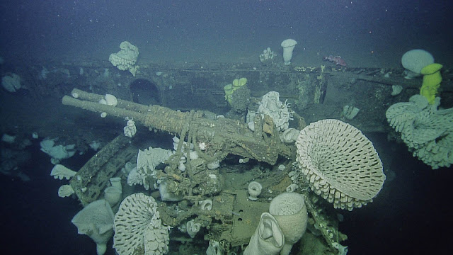 Bofors 40mm anti-aircraft weaponry surrounded by massive glass sponges