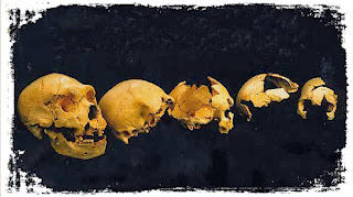 Atapuerca, the great discovery