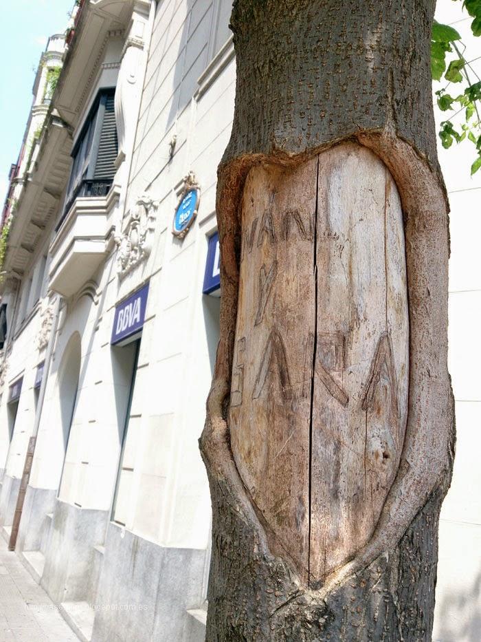 ¿Quien no ha hecho un corazón en un árbol?,amor de los 15 años