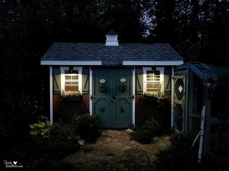 How To Install Lights Outside Your Coop With No Electricity