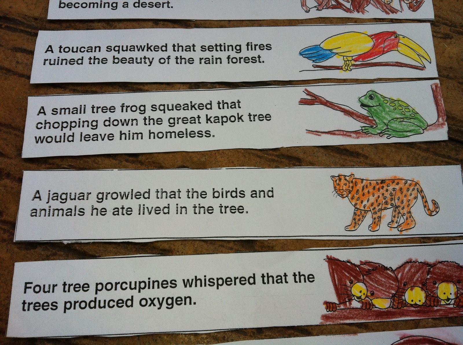 Little Beans The Great Kapok Tree Lapbook Project