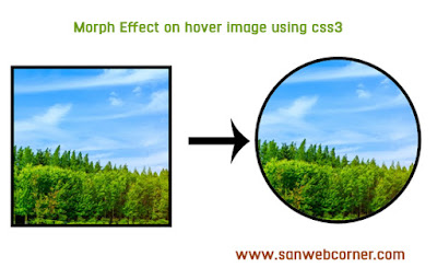 morph-effect-on-hover-image
