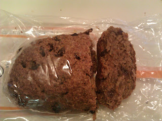 Carrot Raisin Spouted Bread