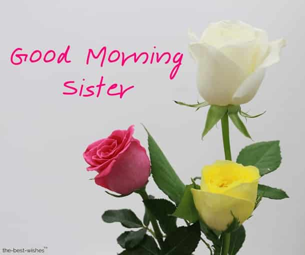good morning sister photos