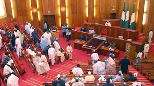 Senators N13.5m Running Cost Brouhaha: RMAFC Gives More Details
