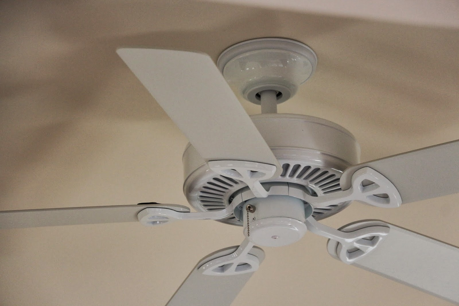 Dusty Coyote Ceiling Fans