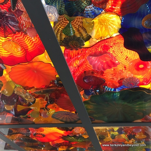 Chihuly ceiling at San Antonio Museum of Art in San Antonio, Texas
