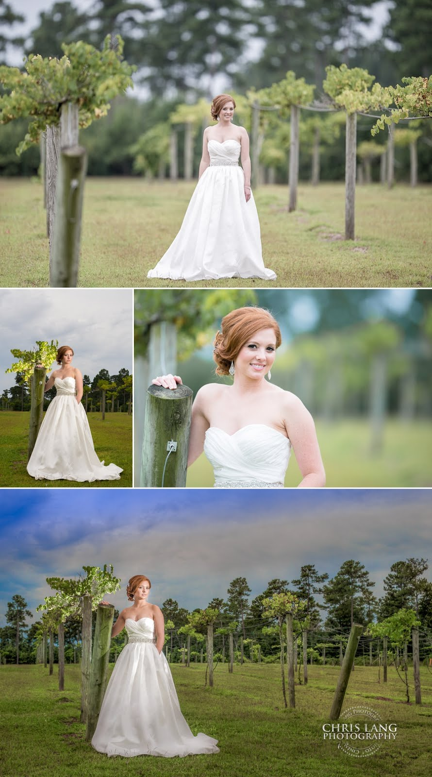 Wedding pictures at the Vineyards in River Landing Wallace NC - Wedding Photography Ideas