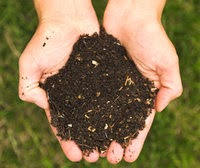 http://www.mightyeco.blogspot.com/2014/04/vermicomposting-adds-value-to-your.html
