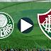 Jogo Palmeiras x Fluminense Ao Vivo 14/11/2018