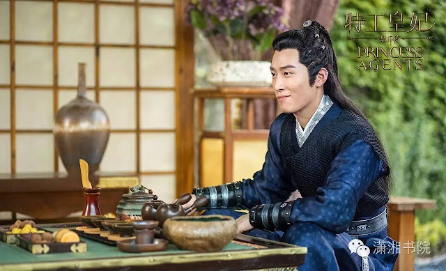Shawn Dou in 2017 Chinese time-travel drama Princess Agents