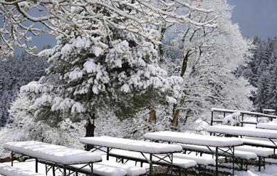 extrém időjárás, időjárás előrejelzés, Románia, Székelyföld, útviszonyok, ANM, havazás, áprilisi havazás, szél