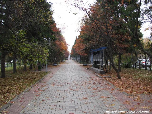 Осень в Томске